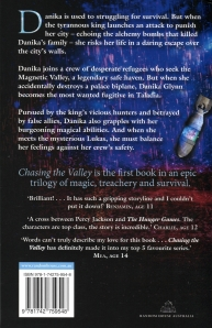 chasing the valley back cover